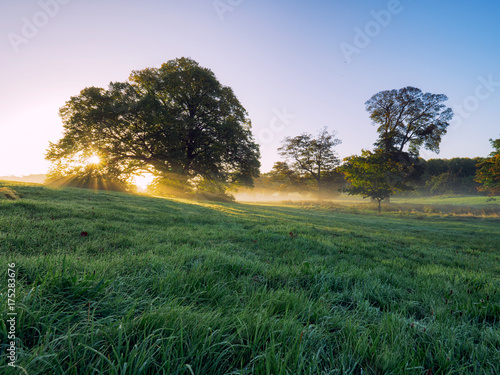 Deurstickers Blauwe hemel Early Autumn countryside morning,Northern Ireland