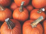 Fototapety Fall Pumpkins Background