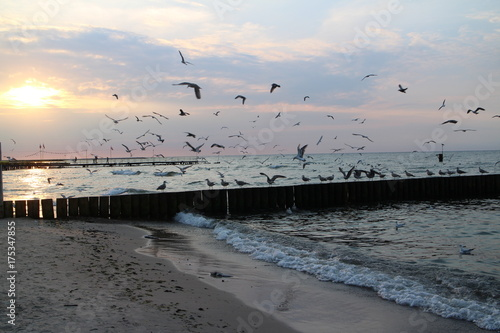 Zachód słońca nad Morzem Bałtyckim plaża wieczór