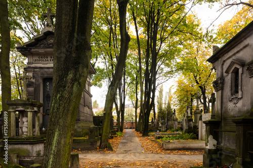 Cmentarz Powązkowski w Warszawie © hunter76