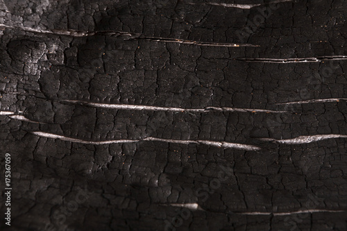 Tuinposter Brandhout textuur Burnt wood black background