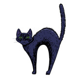 Black cat, scary Halloween sketch illustration. Vector - 175370885