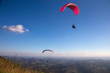 Paraglider flies in the blue sky.