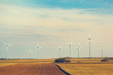 Wind turbines in the field with blue sky with clouds. Toned - 175395087