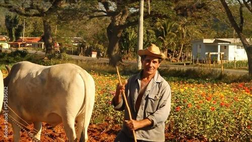 Farmer in field smiles, Cuba