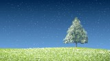 Seamless loop, Christmas tree, green grass with falling snowflakes.