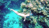 Beautiful woman dive underwater in snorkeling diving mask into clear blue sea water. Tropical underwater reef diving. Woman with a good figure. - 175427419