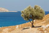 Landscape around the ruins of Feraklos castle, Rhodes island, Greece - 175433449