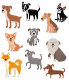 Dogs. Vector set