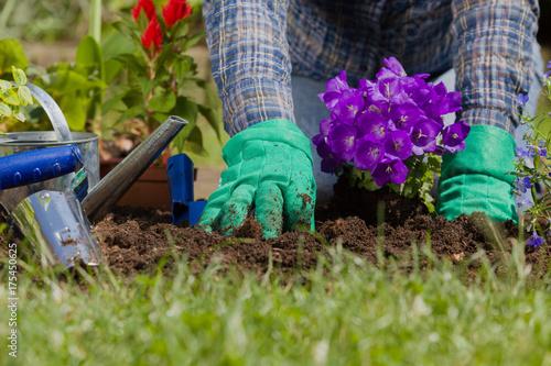 Fridge magnet Planting flowers in the garden home