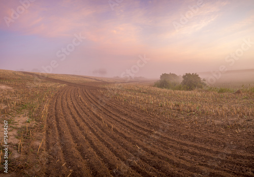 Fotobehang Diepbruine foggy and colorful sunrise on the field in summer
