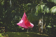 A woman relax in a hammock on Private Retreat in Portobelo