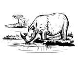 Sketch of rhinoceros - 175474232