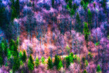 Surreal color image of a forest in winter in painting style - 175484838