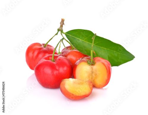 Foto Spatwand Kersen Barbados cherry, Malpighia emarginata, Family Malpighiaceae
