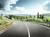 road in north forest - 175504244