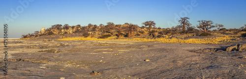 Fotobehang Baobab Kubu Island, Botswana