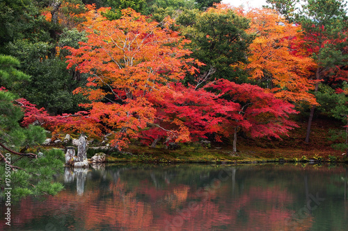 Autumn in Japan © Witthawas