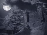 Castle in a full moon night - 175510863