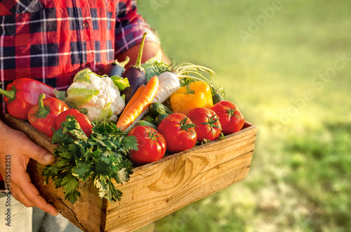 Farmer holding box with fresh vegetables - 175528213