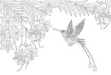 Orchid flowers and hummingbird and palm leaves in the jungle page for adult coloring book in doodle style. - 175532671