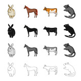 Animal, horse, mane and other web icon in cartoon style.Rabbit, fur, domestic, icons in set collection. - 175540637