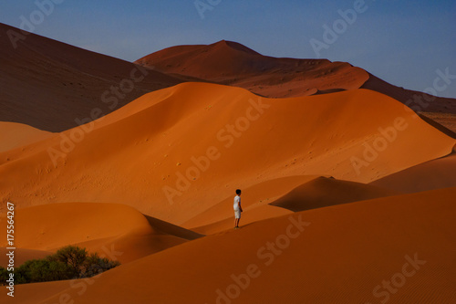 Fridge magnet Contrasting Dune in the Afternoon Sun. Namibia Desert, Namibia