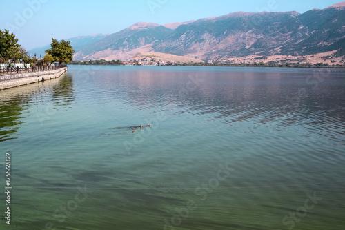 Fotobehang Pool Landscape of Lake Pamvotida, the city of Ioanina, Greece