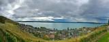 Panorama mit Landschaft am See
