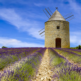 Windmill in blooming lavender field - 175575835