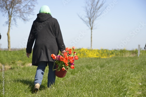 Fotobehang Tulpen Picking Tulips in a field with grass and flowers