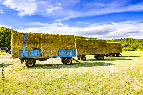 Staande foto Zwavel geel Hay and straw charged on trailer