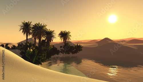 oasis in the sandy desert, sunset over the sands with palm trees and a lake