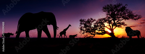 Fotobehang Baobab Famous african animals sunset silhouettes
