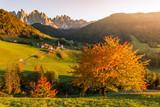 Autumn foliage, Dolomites Alps, Funes Valley, Santa Maddalena. Trentino, Alto Adige, Italy