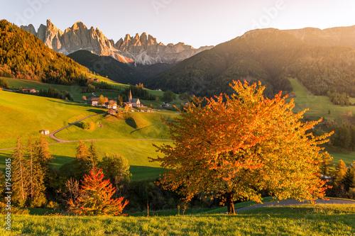 Foto op Canvas Honing Autumn foliage, Dolomites Alps, Funes Valley, Santa Maddalena. Trentino, Alto Adige, Italy