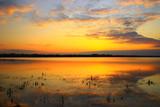 Beautiful sunset on the lake  - 175604695