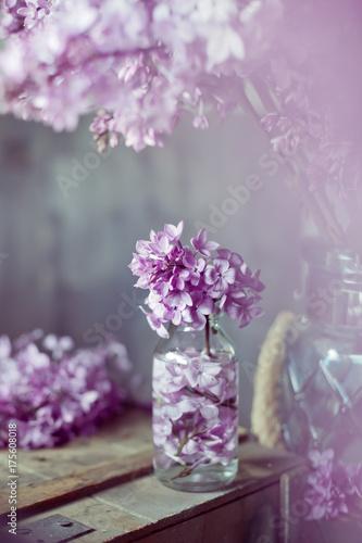 Lilac blossom, vintage style tint photo Plakat