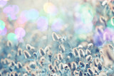 Floral background. Nature beauty - 175618099