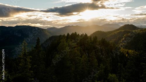 In de dag Zwart Norwegian forest landscape