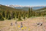 Boreas Pass Scenery Colorado - 175630457