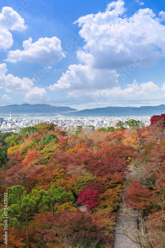 In de dag Kyoto the beautiful Momiji autumn colorful maple garden at Kiyomizu-Dera temple with Kyoto city background, Japan