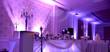 purple light show on a wedding