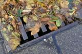 Verstopftes Siel, nasse Blätter am Strassenrand  - 175642609