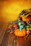 Pumpkins, gourds, and leaves in an Autumn cornucopia background - 175648428