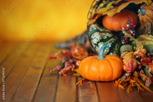 Pumpkins, gourds, and leaves in an Autumn cornucopia background Poster
