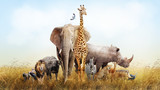 Safari Animals in Africa Composite - 175655424