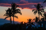 Tropical palm trees during island sunset - 175678299