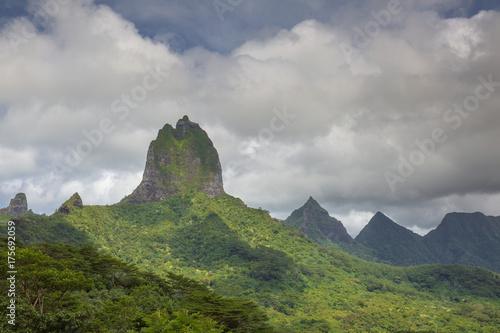 Tuinposter Khaki モーレア島
