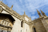 The famous cathedral in Granada, Andalusia - 175701803